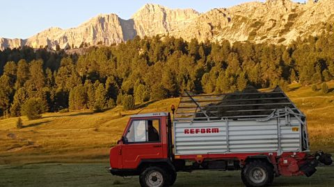Image: Farm holidays in Alta Badia